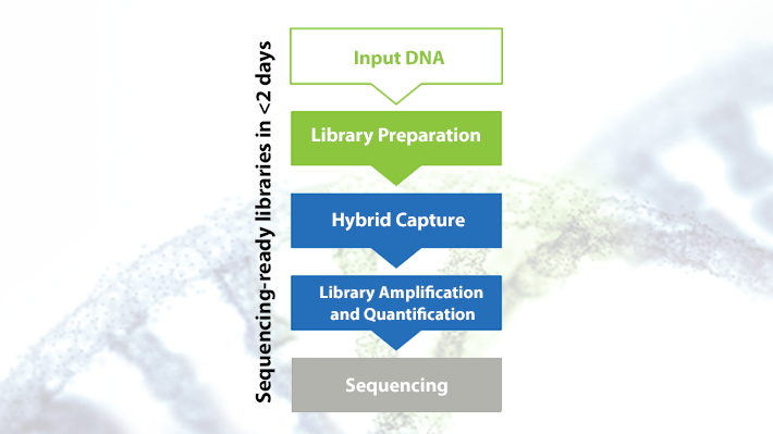 Sequencing-ready libraries in less than 2 days